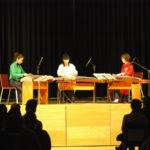 Konzert mit SanChuan Zither Zheng-Trio erfolgreich